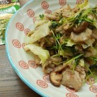 豆苗入り肉野菜炒め<スパイス大使>
