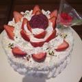 母の日ショートケーキ